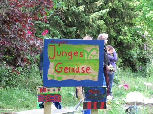 Junges_Gemuese